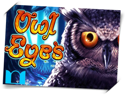 owl-eyes front