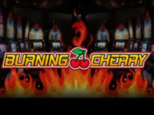 burning-cherry-log