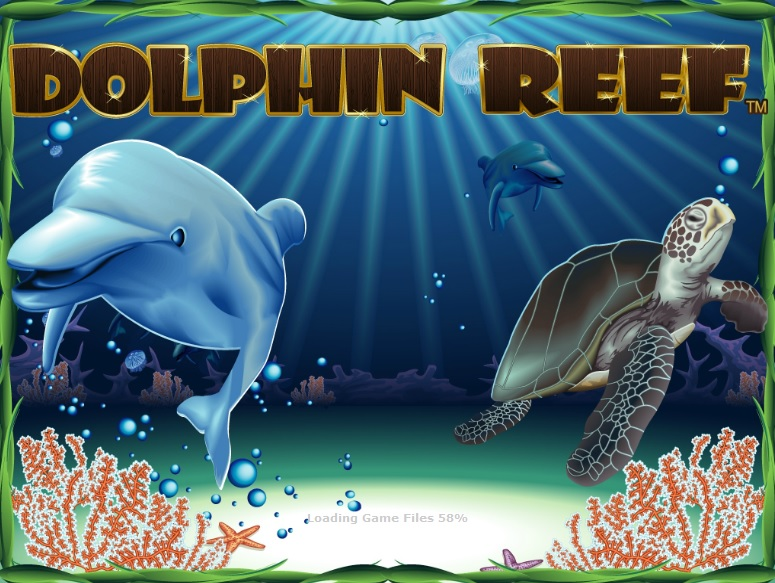 dolphin-reef large