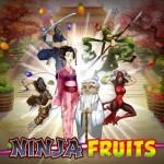 Ninja-Fruits-logo1