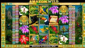 Amazon Wild 1