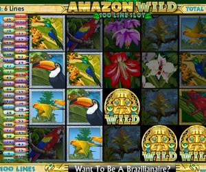 Amazon Wild 3