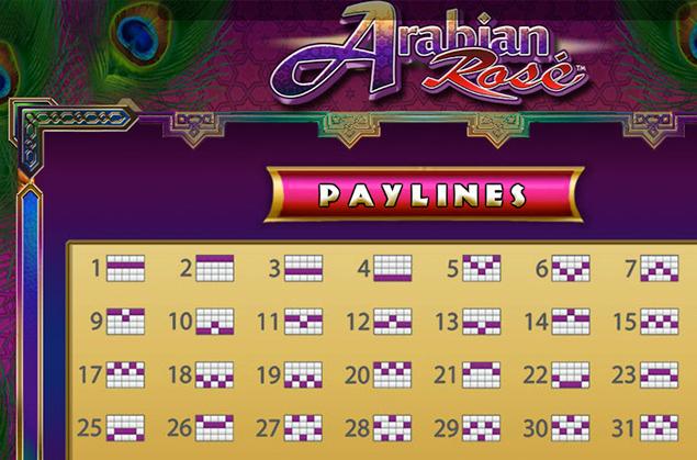 Arabian_Rose_2