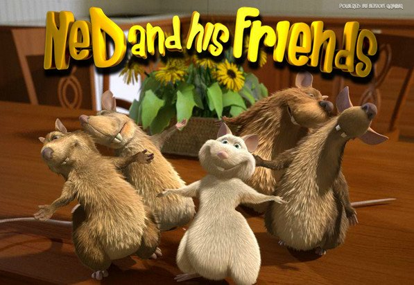 ned-and-the-rats-logo
