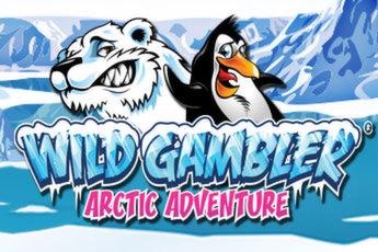 wild-gambler-arctic-adventure-logo