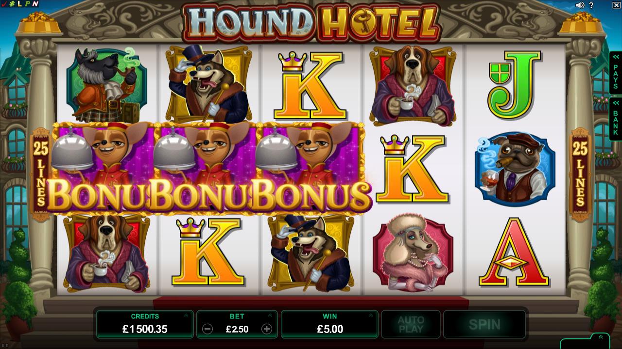 hound-hotel-slot1