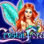 Crystal-Forest-logo1