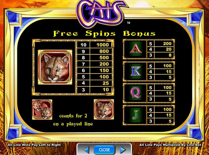cats-info