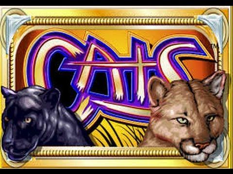 cats-logo2