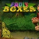 fruit-boxes-logo1