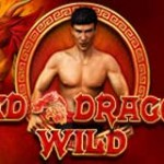 red-dragon-wild-slot-logo