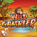 wild-gambler-logo2