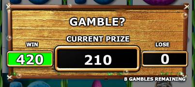 big-catch-gamble