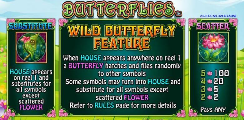 butterflies-info