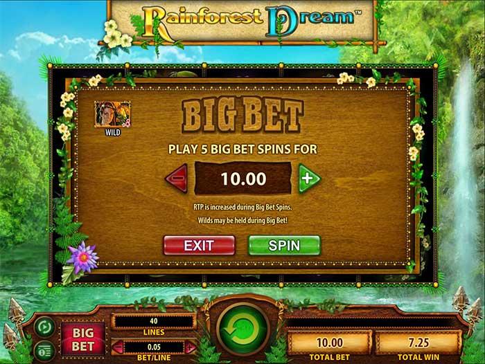rainforest-dream-bet
