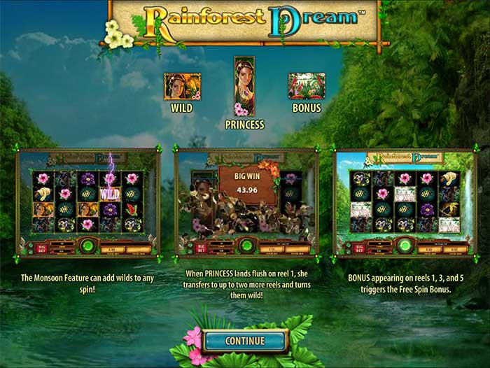 rainforest-dream-info