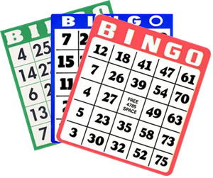 bingo-brickor1