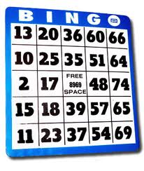 bingo-bricka1