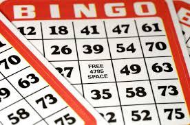 bingo-brickor5