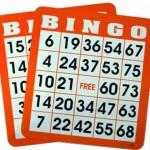 bingo-brickor6