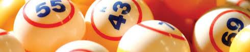 bingo28