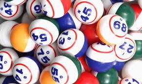 bingo6
